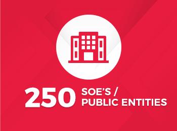 250 SOES Public Entities